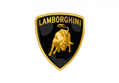 Lamborghini Servicing and Repairs