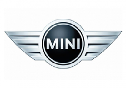 Mini Servicing and Repairs